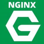 Aceleramos el servidor web para ayudarte en el SEO: NGINX